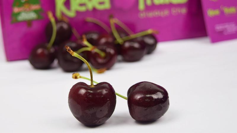 Giá sốc Cherry New Zealand