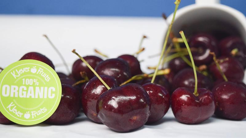 Duy nhất tại Klever Fruits: Mở bán Cherry Organic Mỹ hảo hạng