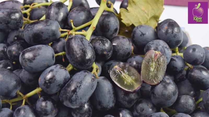 Klever Fruits: nho đen không hạt Úc chỉ 99k