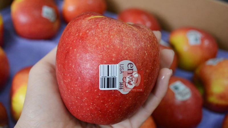 Mua trái cây nhập khẩu, đến Vfood!