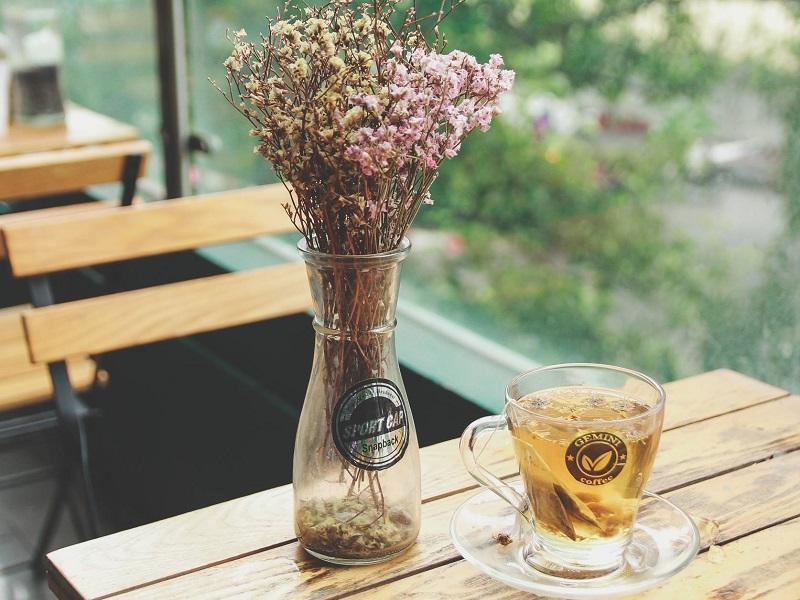 Gemini Coffee - Quán cafe xanh