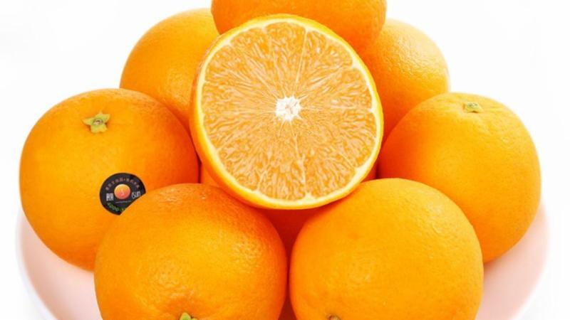 Vfood: Trái cây nhập khẩu số 1 Việt Nam