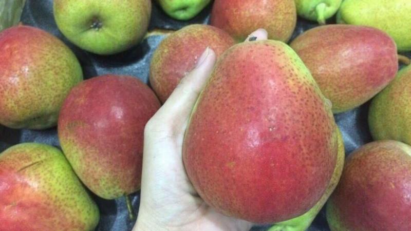 Mua trái cây nhập khẩu, đến DP Fruits!